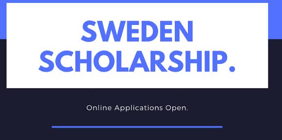 Swedish Institute scholarship