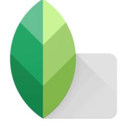 Snapseed-App-Download